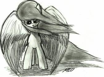Pony #7