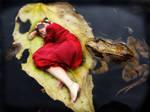 Frog Princess by Emzone
