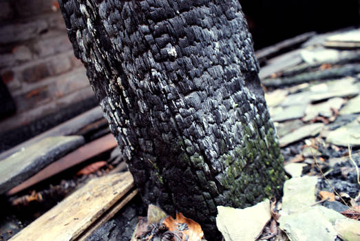 Charred Perspective