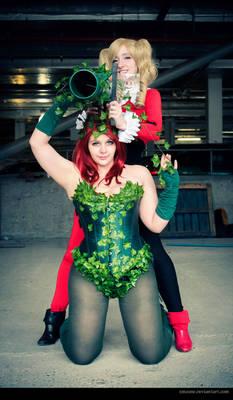 Barrel of Ivy