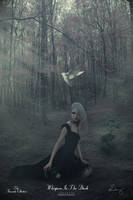 Whispers In The Dark by theartofdarrenvannoy