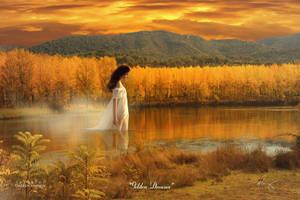 Golden Dreams by theartofdarrenvannoy