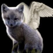 Angel Fox by sliverwolf018
