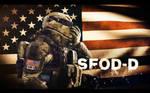MoH: Warfighter SFOD-D