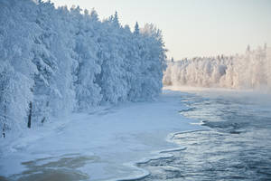 Winter by markotapio