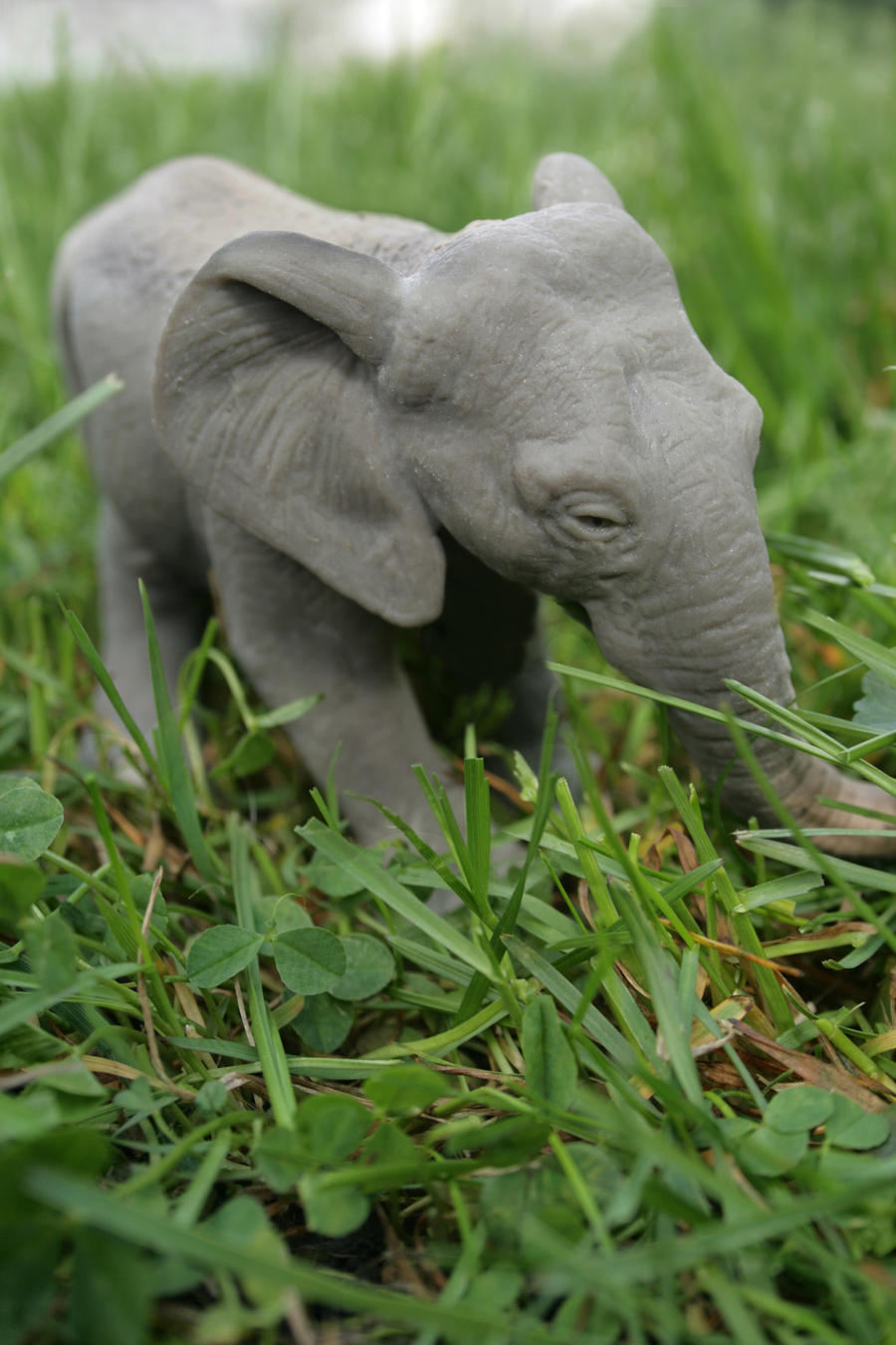 Mini elephant by maddie71090 on deviantART