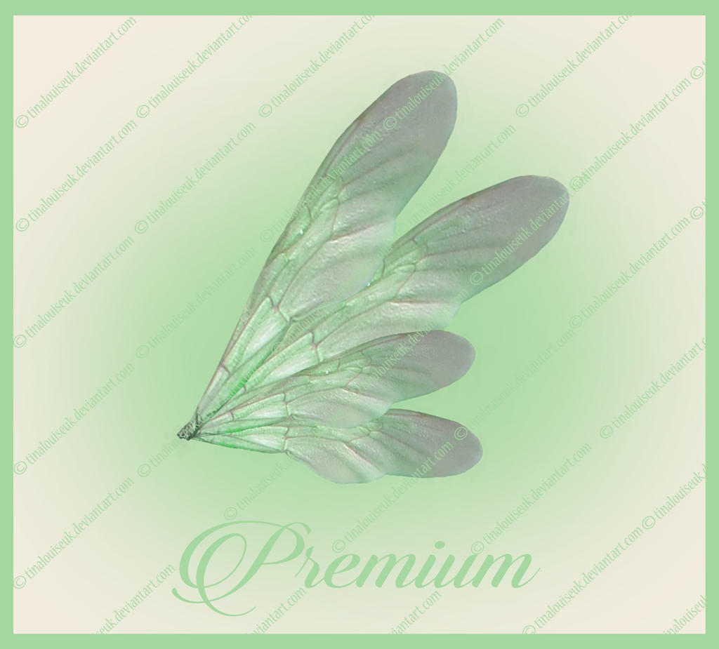 Green fairy wings png