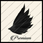 Dark Angel Wings png
