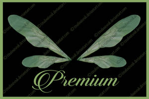 Transparent Green wings png by TinaLouiseUk