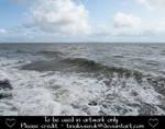 Sea (8)