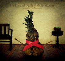 The Life and Death of Mr Potatoman Part 3 by TinaLouiseUk