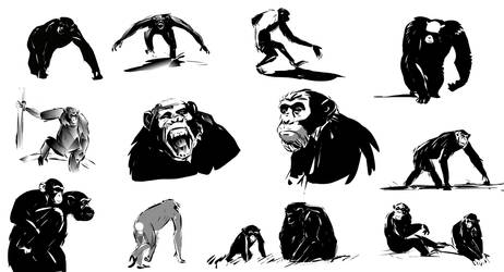 Shapes of Apes. 1h study by monsta87