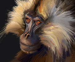 Monkey Study (1 hour) by monsta87