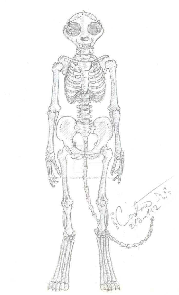Bicha's skeleton by ARAMIS10JAGUAR