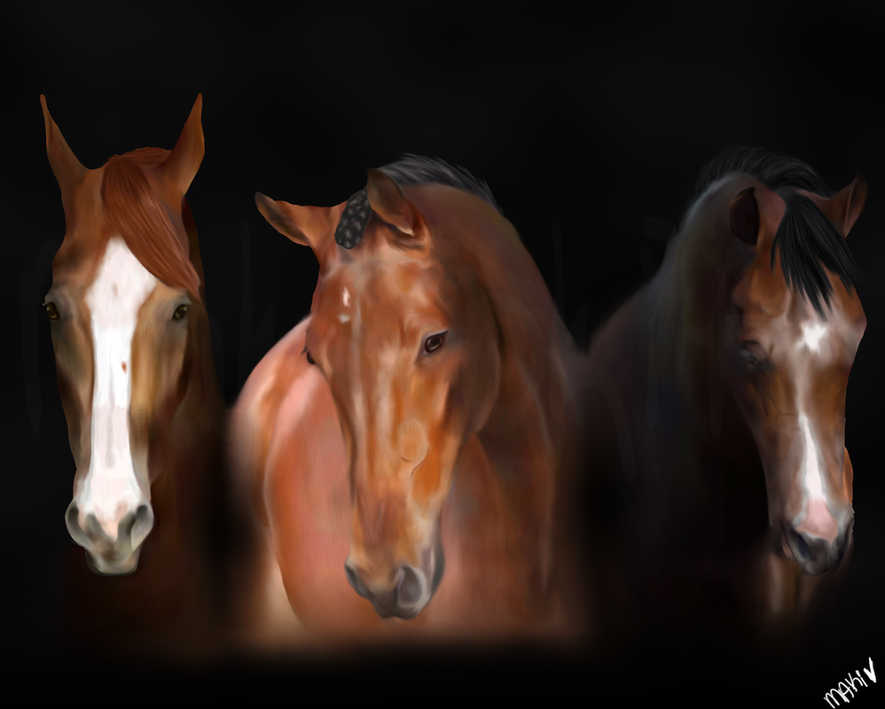 Racehorses WIP Finished! by MakiTokito