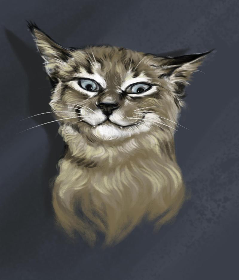Happy Cat by LumiLumi
