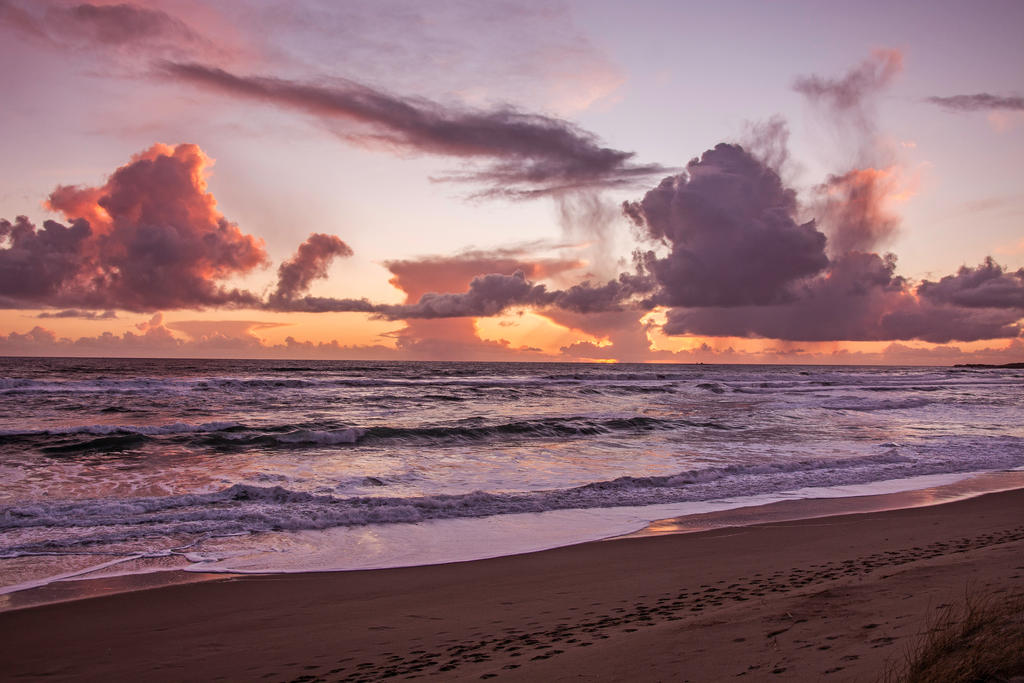 Pinky Beach by Becwa