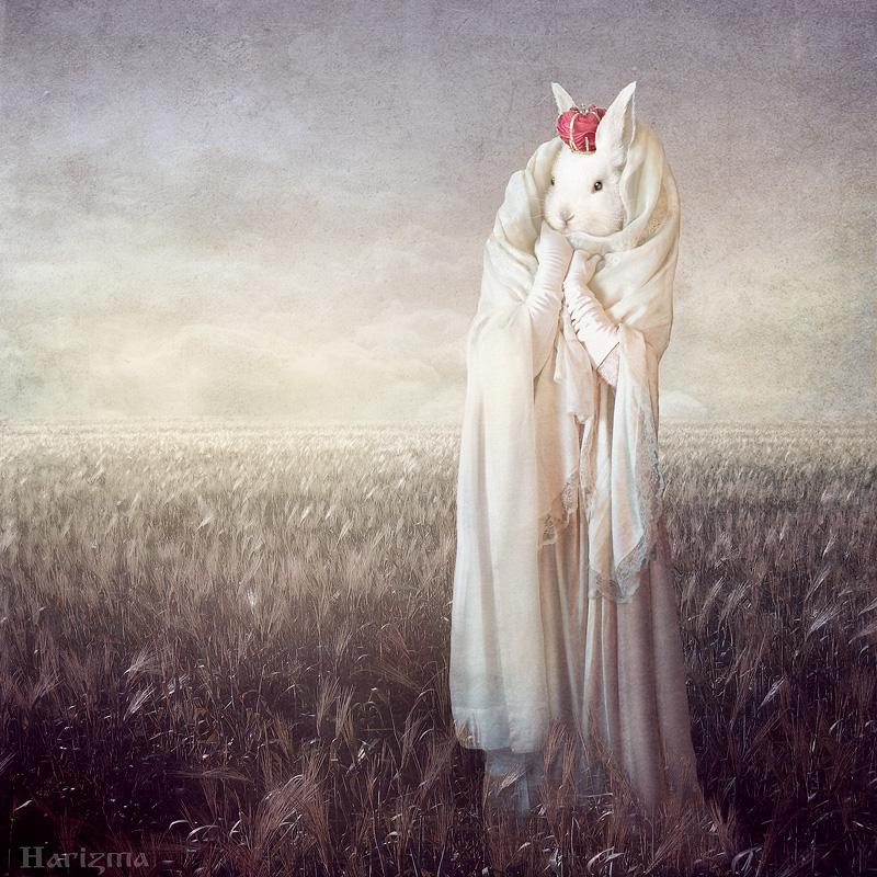 Rabbit queen by HarizmaArt