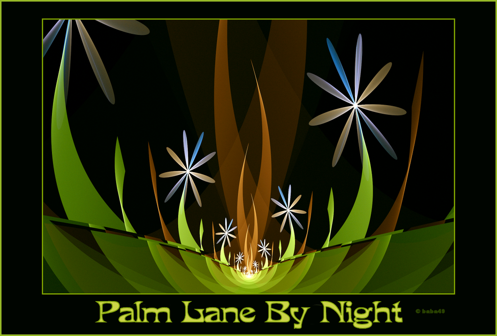 Palm Lane by Night by baba49