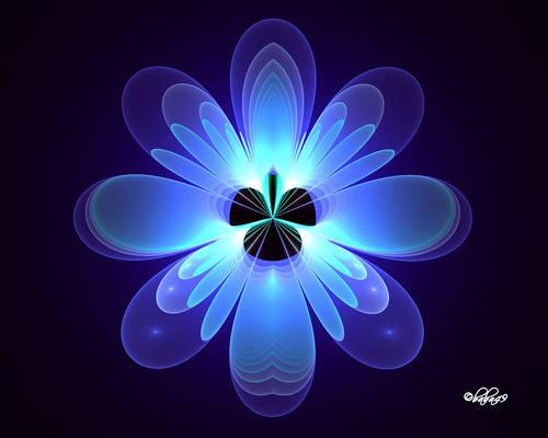 Blue Flower For Erica