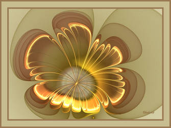 Golden Flower by baba49