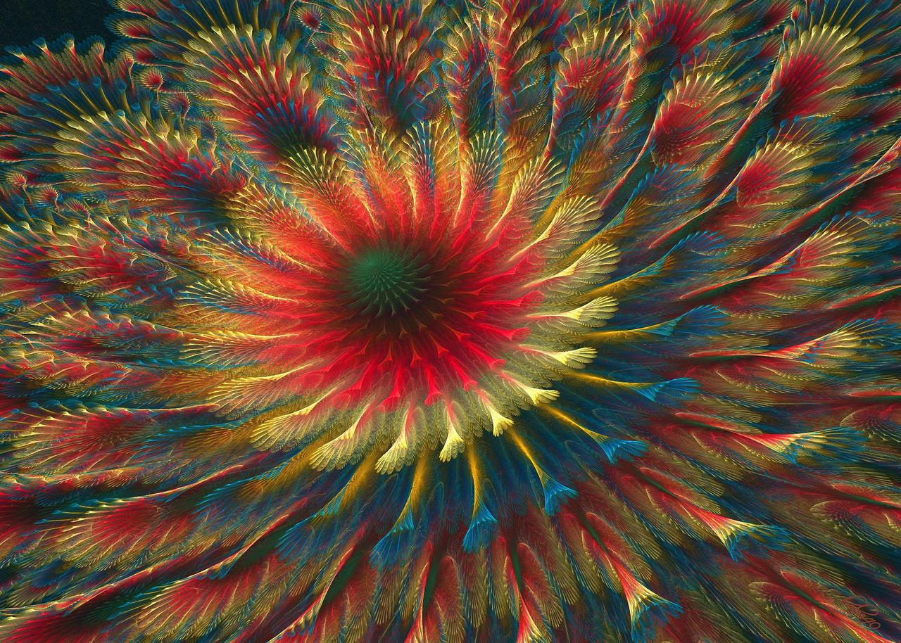 Julian Rings2 Flower by baba49