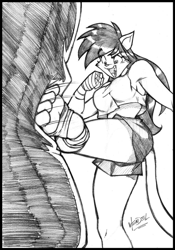 Deborah's low kick. by Drawing-4Ever