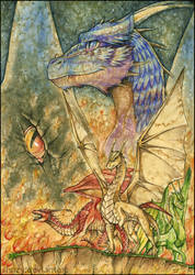 The Dragons Of Inheritance by shazy