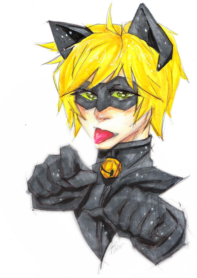 Cat Noir by ArikaTwins