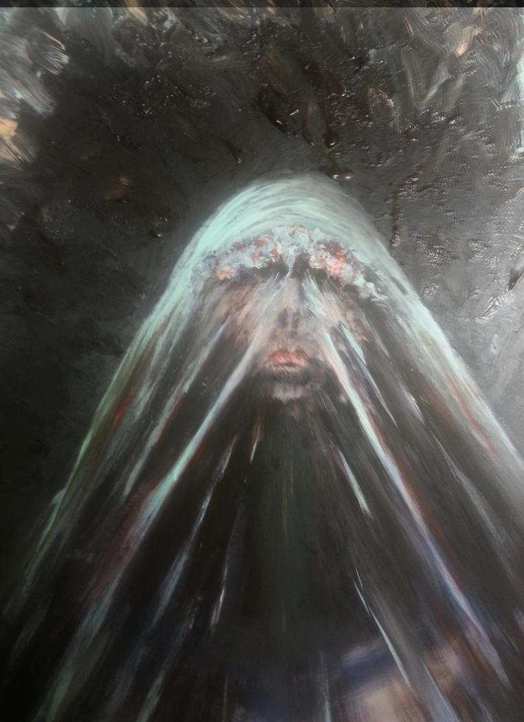 The Dark Veil Of Beauty by majorstephen52