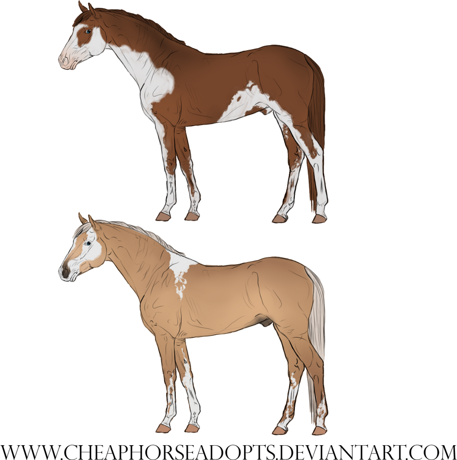 Horse designs pack 01 by CheapHorseAdopts on deviantART