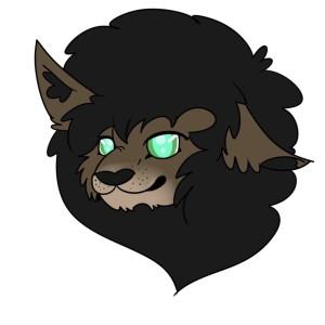 ThePandaHatXD's Profile Picture