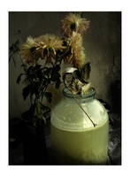 Nature morte by 291