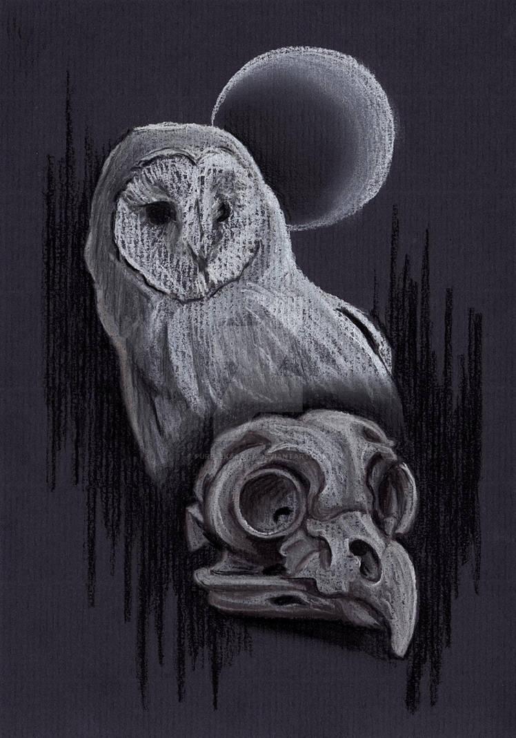 Owl Skull Moon