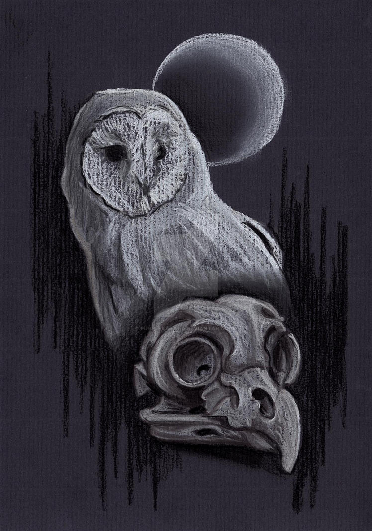 Owl Skull Moon by Purplekatana