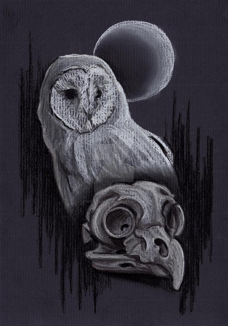 Owl Skull Moon by Purplekatana