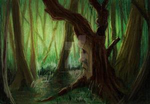 35. Tree Man