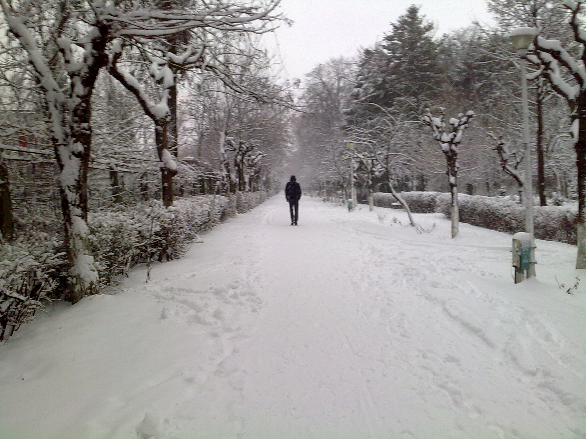 Hd wallpaper road - Lonely Winter Wallpaper Viewing Gallery