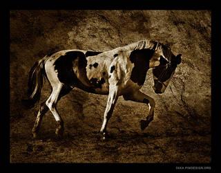 Horses II by 54ka