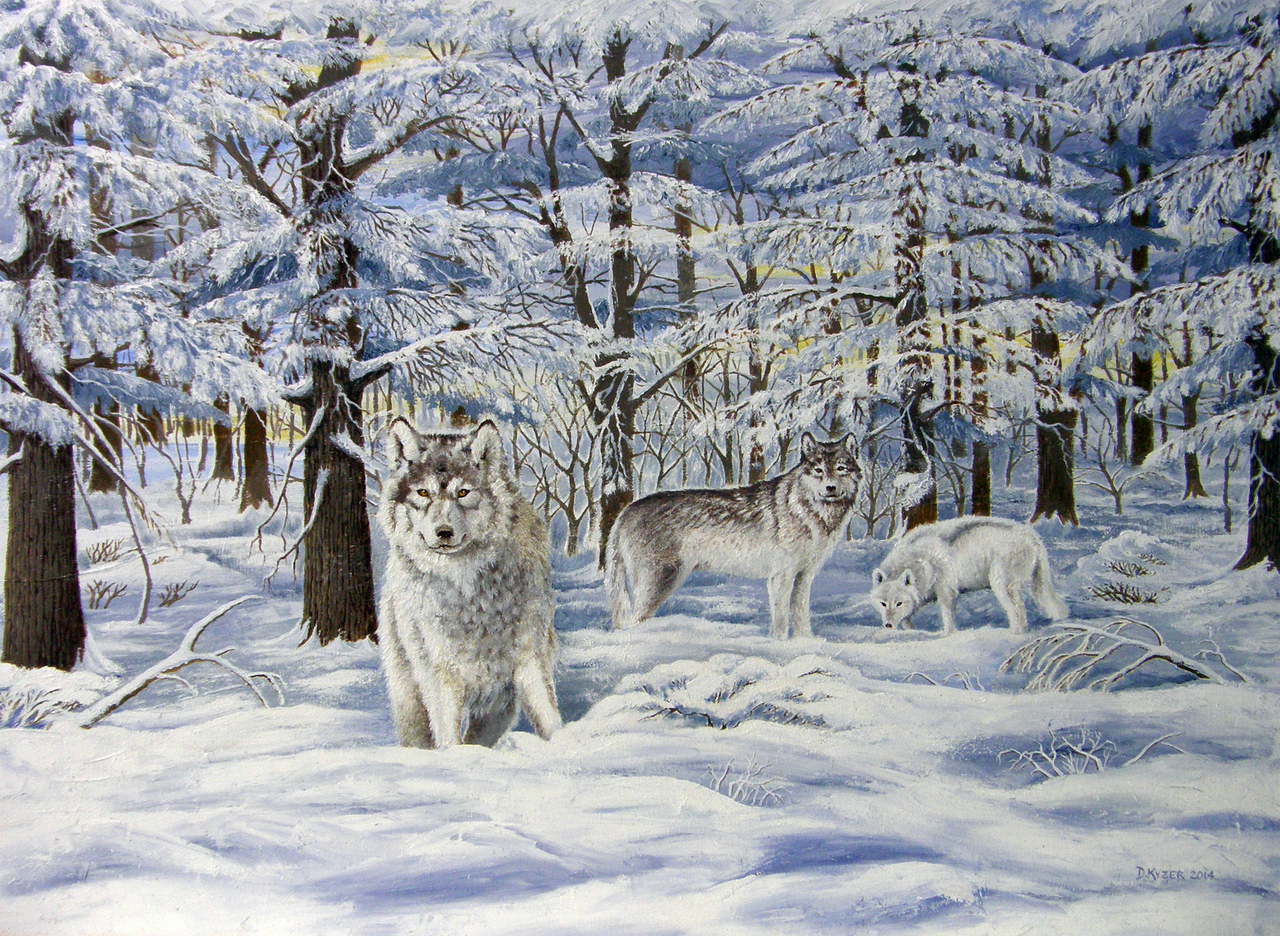 Winter Wolves by DRKyz