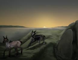 [VE] The Bog at Sunset