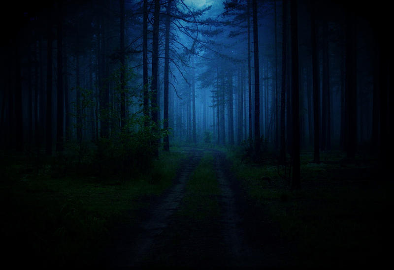 el interior del bosque by Iridescent-happinesS