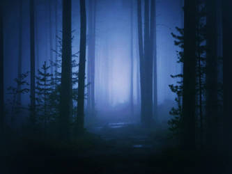 misty forest by Iridescent-happinesS