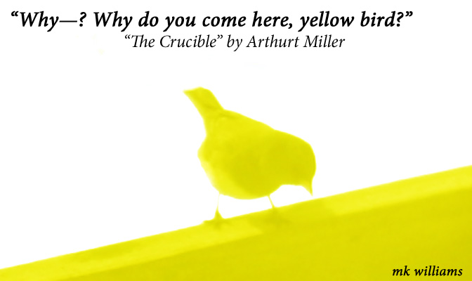 """yellow bird spirit analysis arthur miller s crucible play One of the most vibrant, deep, and sagacious screenplays of the 21st century is arthur miller's """"the crucible"""" miller brilliantly comments on human morals, authority, and mass hysteria."""