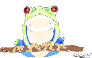 Frog perched on a branch