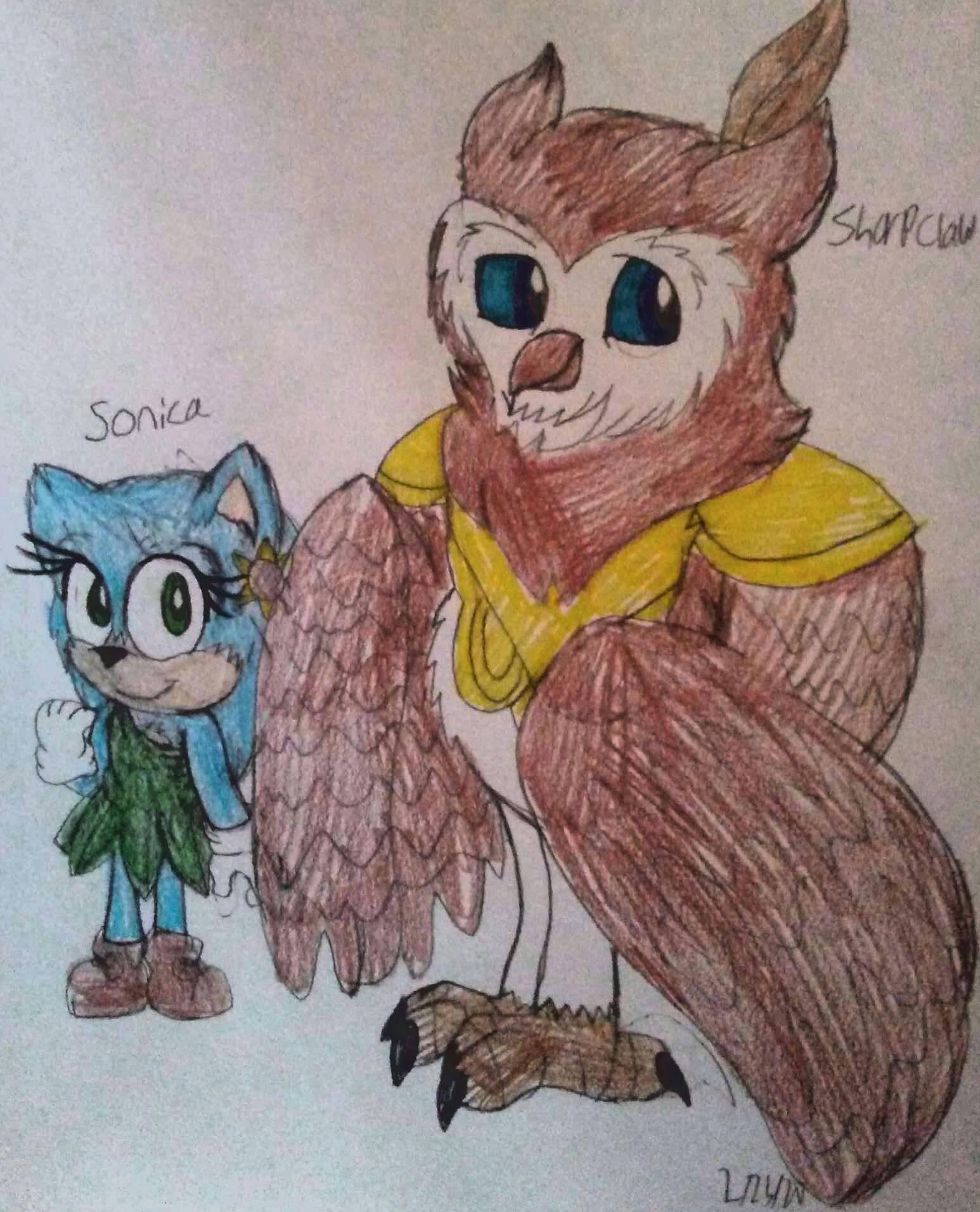 Genderbent Sonic Movie By Kadiandsonic On Deviantart