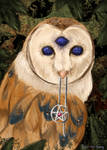 The Owl With Three Eyes