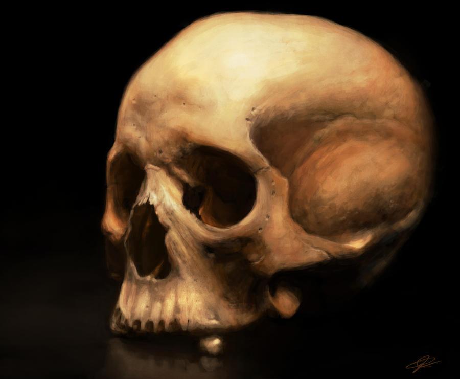real skull 34 giftsforsubs