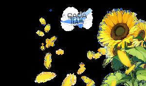 [ Jang ] PNG by SAYA-Team
