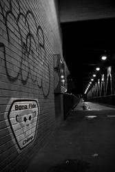 No Easy Path by BonaFideChimp